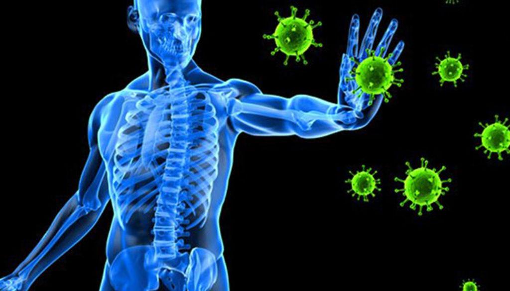 Immunity pic resized for web